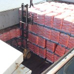 Salt on Pallets martin butterly shipping agent